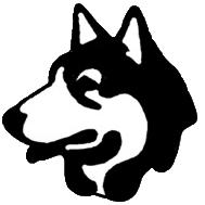 husky-dog-v1