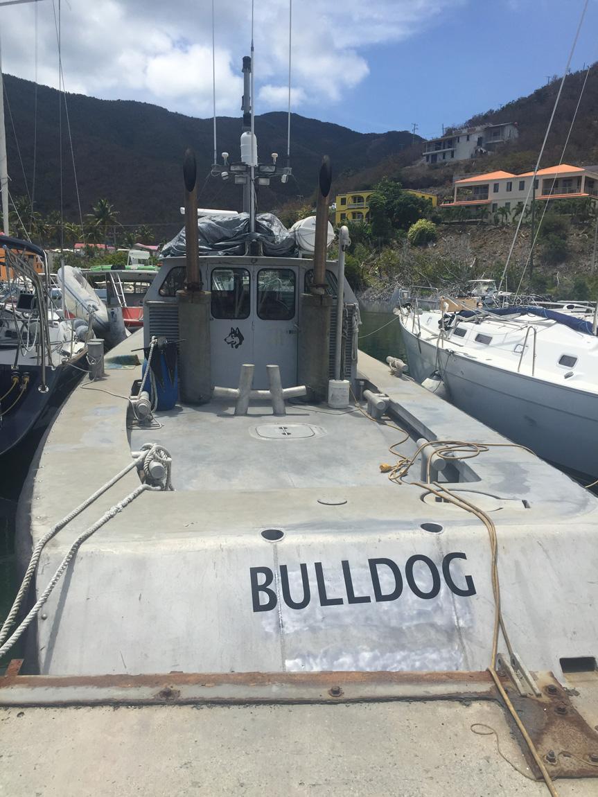 Tug Bull Dog